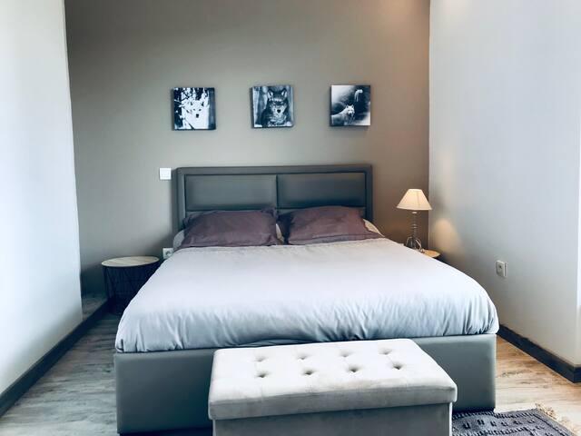 Appartement  Rodez Centre Ville