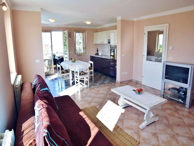 Villa Tankovic A1 Two bedroom apartment - Rovinjsko Selo - Byt