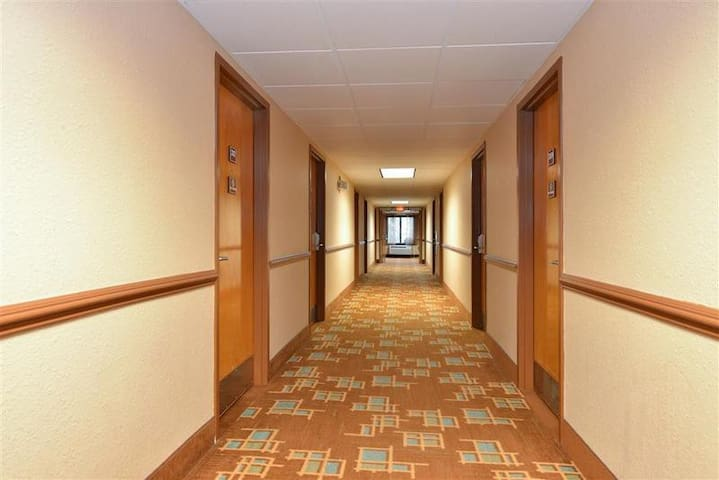☼☼☼ Superb Room Two Double Beds Non Smoking At Downtown ☼☼☼