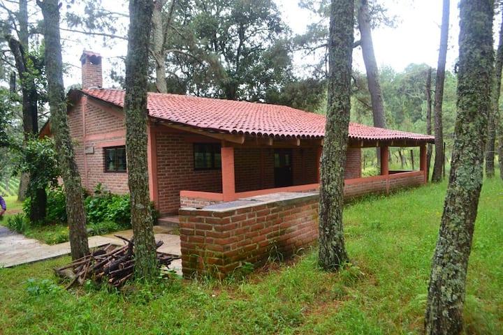 Cabaña Girasoles - Rancho El Paraíso