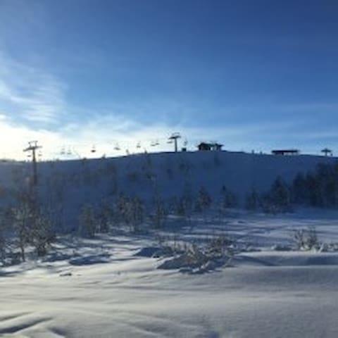 Ny leilighet Kikut, Geilo. Ski in/ski out. - Geilo - Apartament