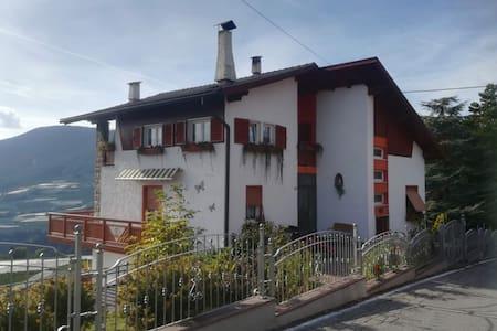 Residence Belvedere.