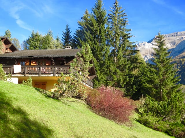 Family Chalet in Belvedere area - Les Diablerets