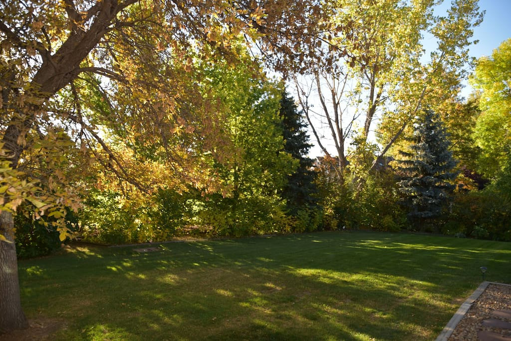 HUGE BACK YARD IN THE FALL, ALL YOURS TO ENJOY