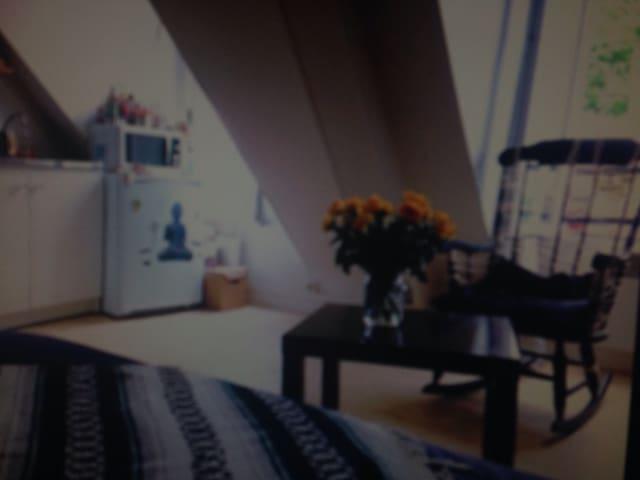 Studio lumineux bien situe - Saint-Lys - Appartement