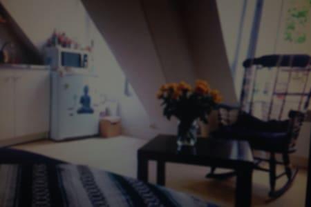 Studio lumineux bien situe - Saint-Lys - Apartment