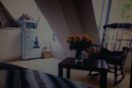 Studio lumineux bien situe - Saint-Lys - アパート
