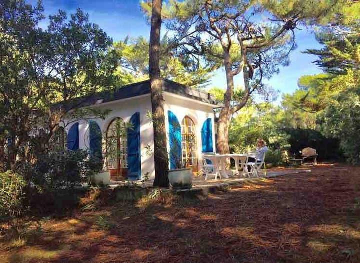 Cap ferret Tip - Family Villa for 7/8 pers