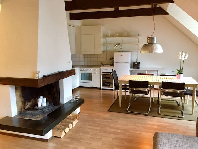 Lovely apartment with roof top balcony in old town - Lucerne - Apartemen