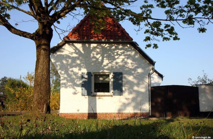 Ferienhaus für 4 Gäste mit 40m² in Zingst (127522)