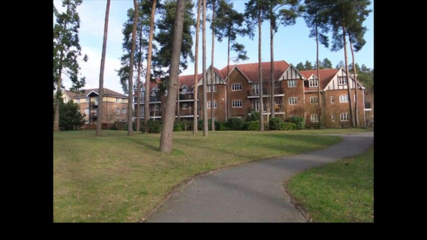 Spacious apartment perfect for Farnborough Airshow - Fleet - Apartamento