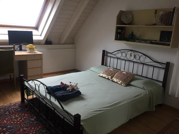 Double Bedroom on Rhine River, private bathroom
