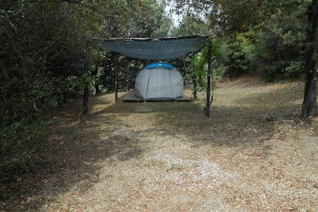 Agriturismo Podere Novo 153 - Piazzola tenda