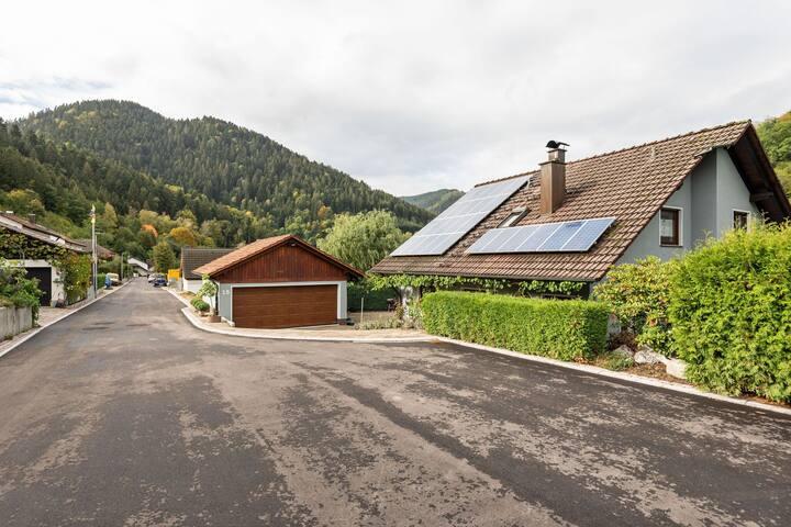 Gemütliches Ferienhaus in Lehengericht am Waldrand