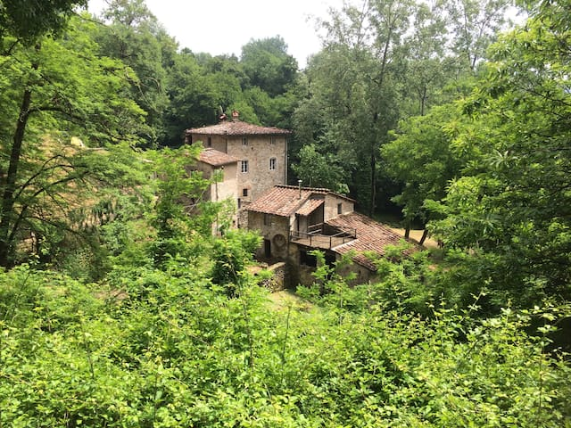 The Mill House and tickets for LUCCA Rock Concerts