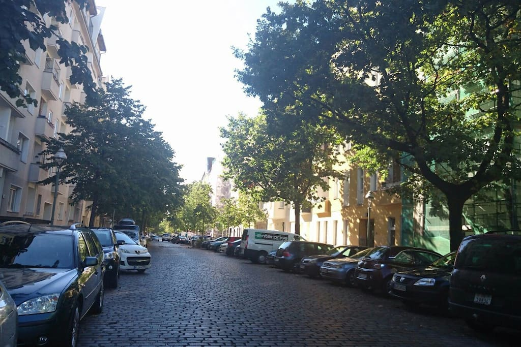 Our street: cobblestones and treelined