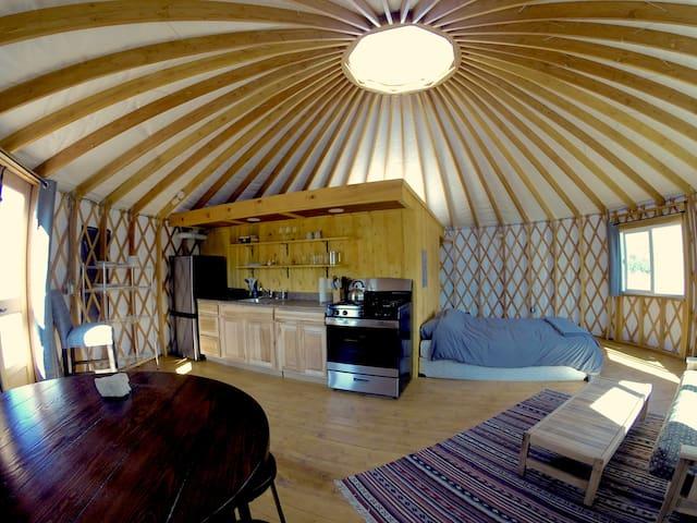 Yurts At Poncha Pass - The Iris