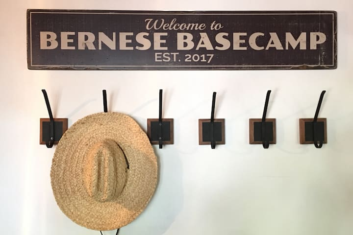 Bernese Basecamp: Tahoe Truckee Cabin 8 ppl Dog OK
