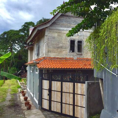 Rice field views in Canggu - Badung - Wohnung