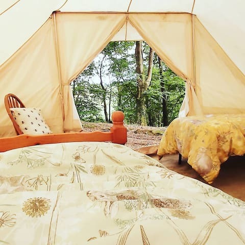 Offgrid Wildlife Woodland in Cornwall, Tawny tent.