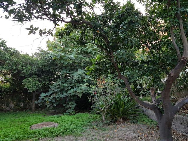 La porzione di giardino a uso esclusivo della stanza