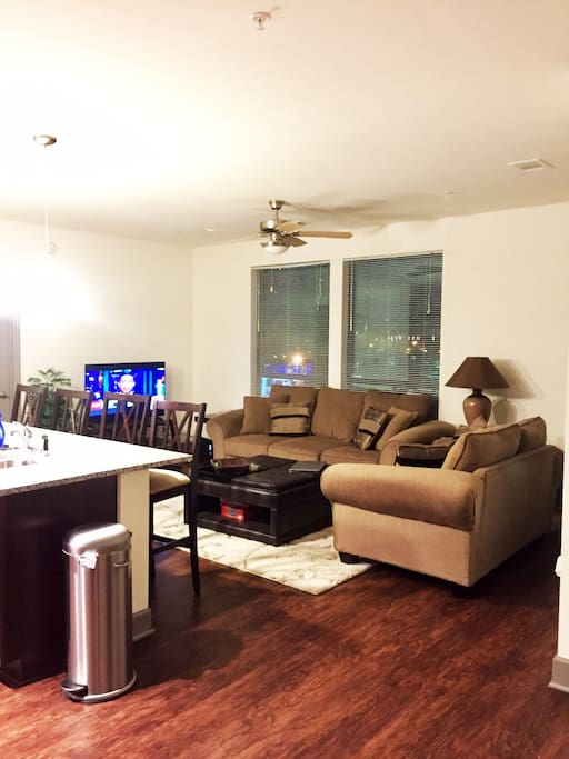 View of TV Area!