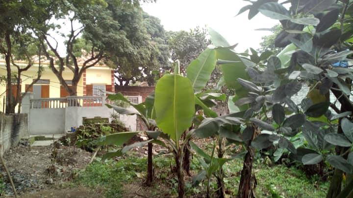 Hoang Homestay