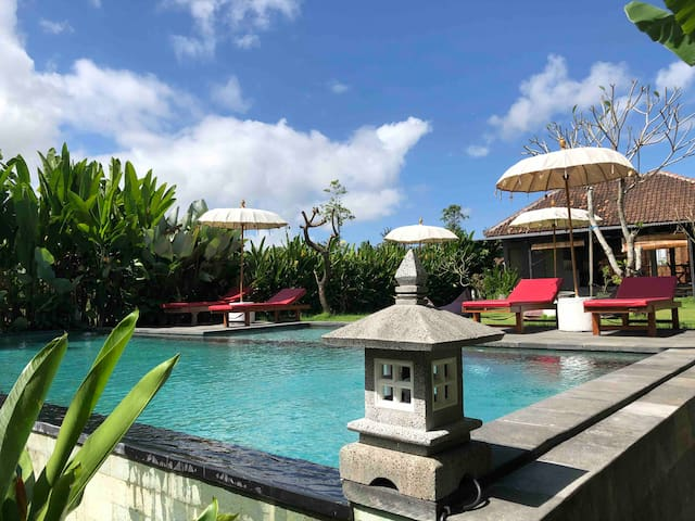 Coucou Bali Apartment 2 with Share-Pool