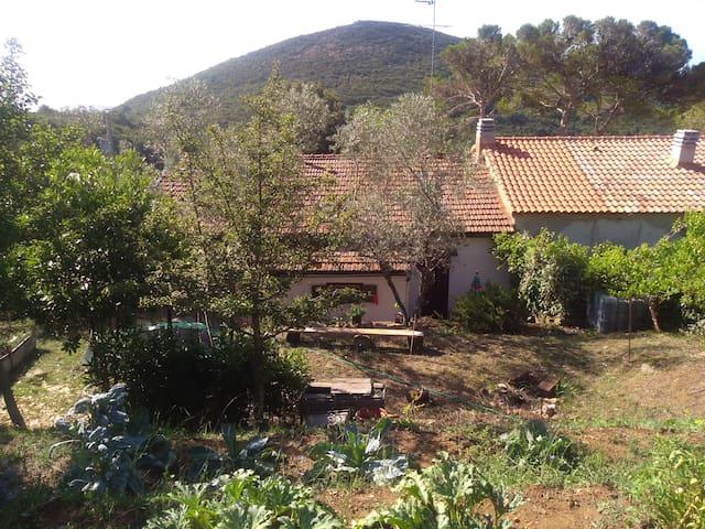 Casa in collina vista mare