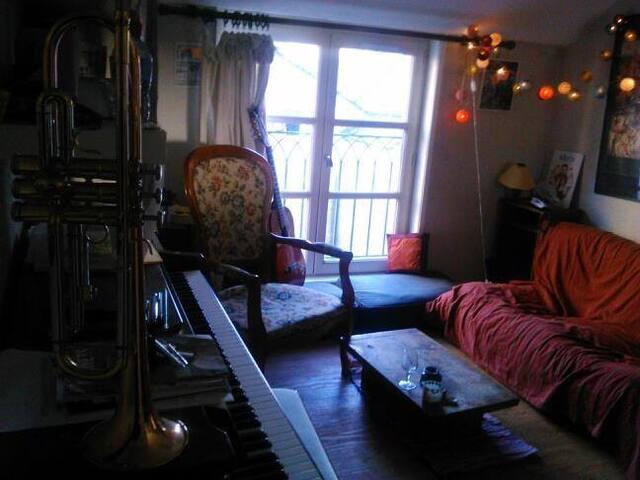 Appartement de charme en plein cœur du vieux Tours - Tours - Pis