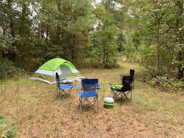 Primitive Camping Near I-75 - Goat Camp