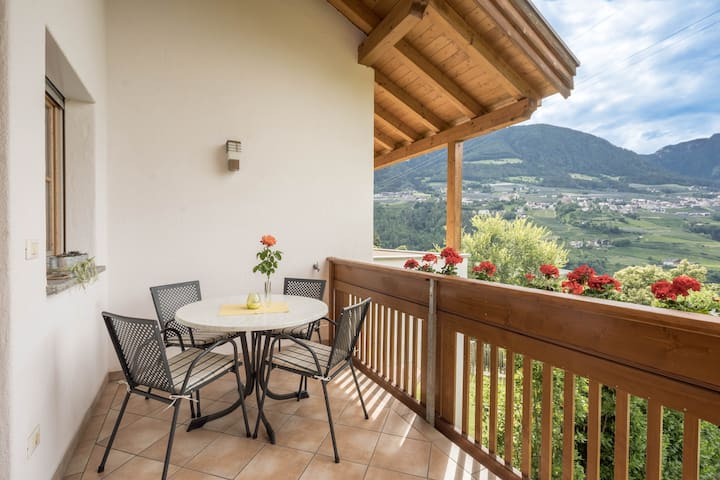 "Cosy holiday apartment ""Tischlerhof - Typ B mit Balkon"" with Wi-Fi, balcony and mountain view; parking available"