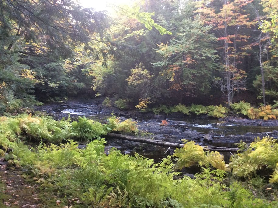 Beautiful Skootamatta River in the fall. The rushing river you can hear from the cabin.
