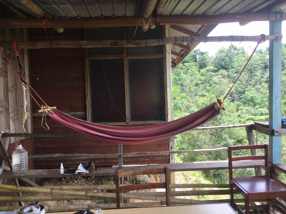 Hammock for Guests