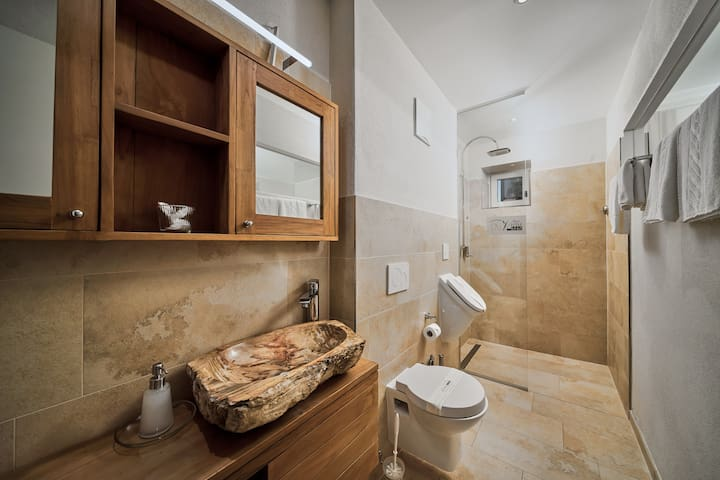 Luxurious Apartment Mirabell