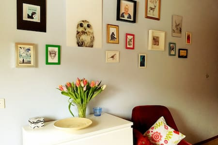 Bright And Colourful Room On An Alpaca Farm - Stang bei Hatzendorf - Bed & Breakfast