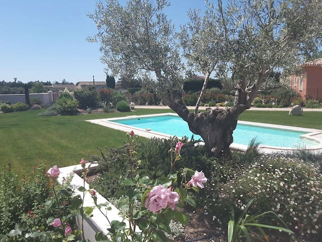 "Aubade en Luberon ""Jonquille"" - Cavaillon - Villa"