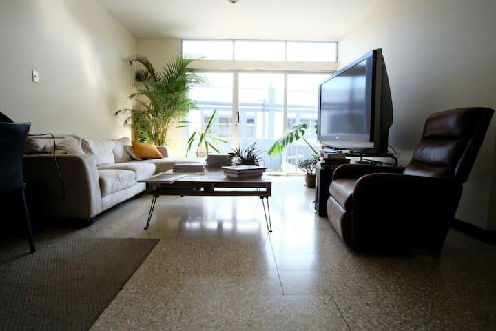 Tropical flat with entrepreneurs in San José!!