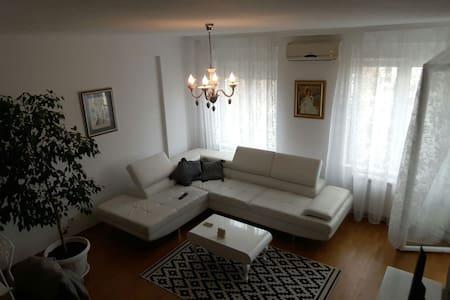 Luxurious apartment in New Belgrade - Belgrade