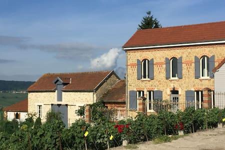 Maison Le Figuier dans village viticole - Venteuil