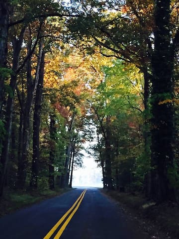 This road leads to our home.