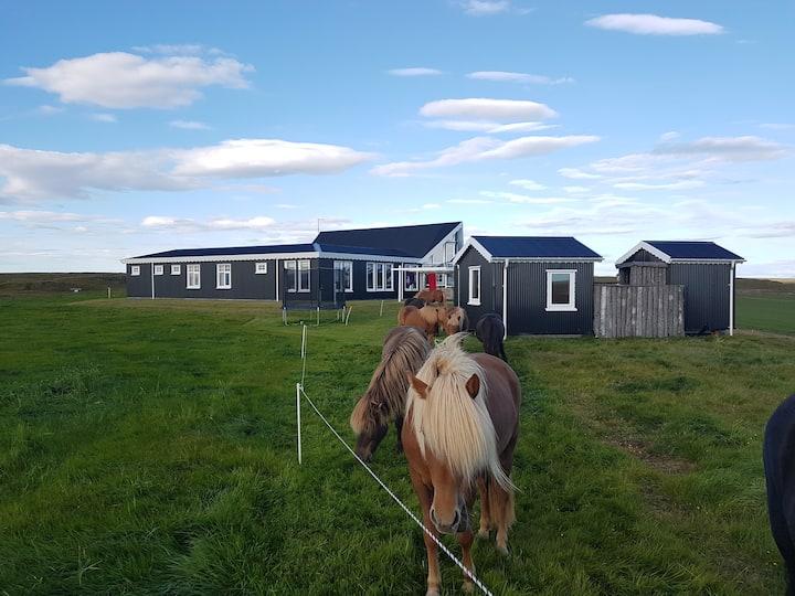 Miðás - Beautiful Farm Holidays and Horse Riding-1