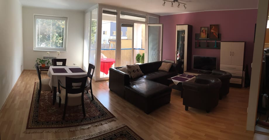Spacious and nice flat 10min to city center - Košice - Pis