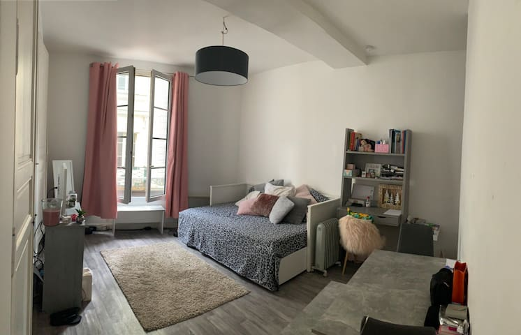 Appartement cosy hypercentre Angers