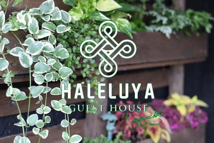 晴家(HALELUYA) Guest House Kawaguchiko Mt.fuji