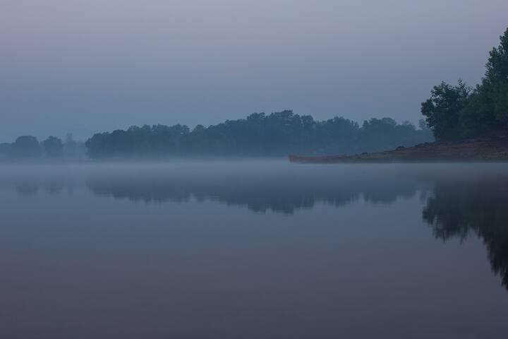 Misty morning at Farm