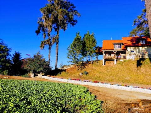 Valle Fresco Eco-Lodge Villa #1