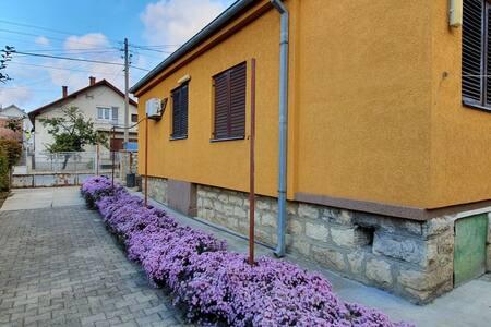 """Beautiful cozy Guesthouse """"Stojanović"""""""