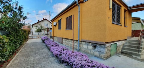 "Beautiful cozy Guesthouse ""Stojanović"""