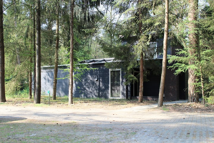 Spacious and luxurious holiday house, Vechtdal!
